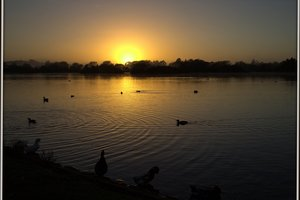DECEIVING: Henley Lake is a beautiful sight at sunrise but has underlying problems. PHOTO/FIL