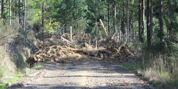 A blocked forestry road in Ngaumu Forest in an image supplied to the Times-Age by a group seeking better access. PHOTO/FILE