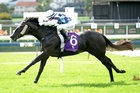 Astara wins the Ginde Juvenile at Ellerslie yesterday. Photo / Race Images