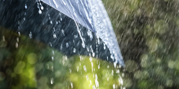 Aucklanders can expected the odd shower today, with rain forecast towards the evening and strong north-easterly winds. Photo / iStock