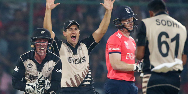 New Zealand's Luke Ronchi, left, and teammate's Ross Taylor and Ish Sodhi, right, celebrate the dismissal of England's Eoin Morgan. Photo / AP