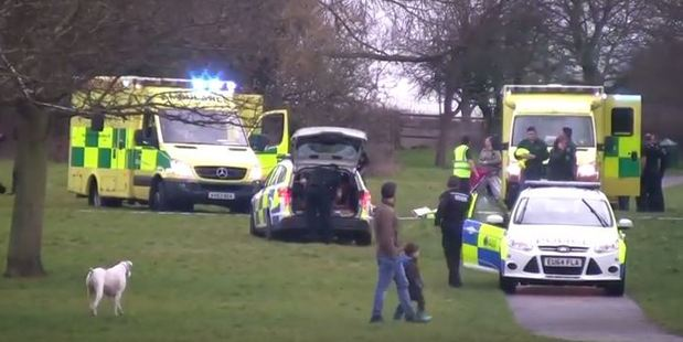 Video footage showed a number of ambulances at the scene of the accident. Photo / YouTube