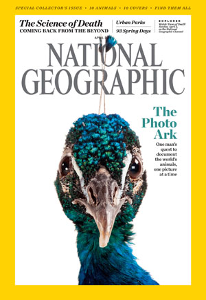 Photo / National Geographic