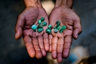Some locals in Kachin state make a living selling small jade stones, but mining has done widespread damage to the environment. Picture / Washington Post