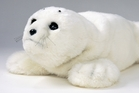 Seal robots are helping dementia patients at Selwyn Village.
