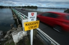 Bridge or stream? Photo / John Borren