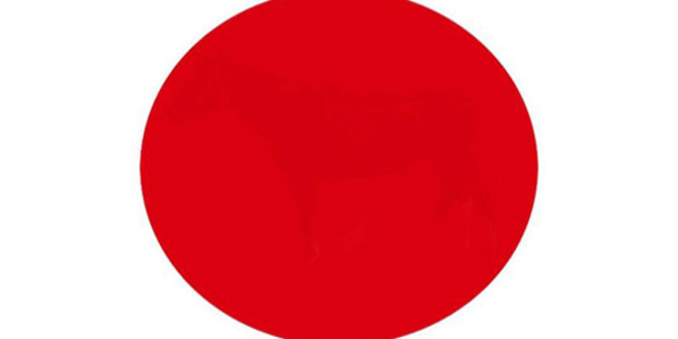 Can you see an image or just a red dot? Photo / PlayBuzz, Jack ONeil