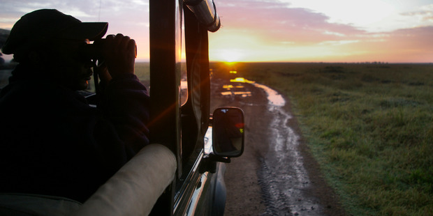 Binoculars are your best friend on safari. Photo / 123RF