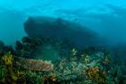 The Rena wreck is no longer a hazard to navigation or a hazardous ship. Photo/File