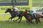 Perfect Fit wins the NZ Thoroughbred Breeders Stakes. Photo / Trish Dunell