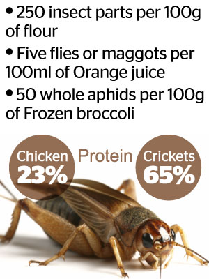 Did you know you ingest a portion of insects with certain foods? Image / NZ Herald