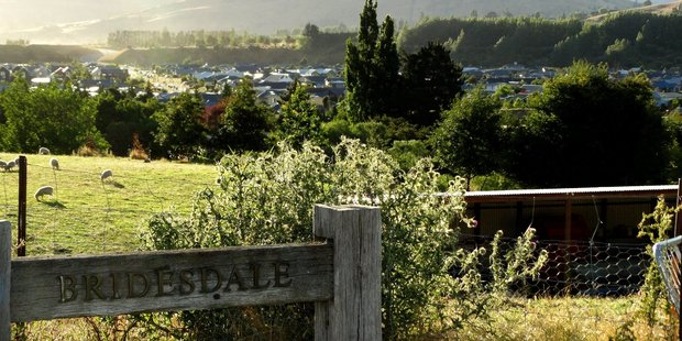 A 360sq m section at the Bridesdale Farm subdivision - a special housing area aimed at addressing the resort's housing affordability problem - is advertised for $755,000. Photo / Otago Daily Times