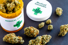 The charity will advocate for access to medical cannabis products for patients who may benefit from it. Photo / Getty Images