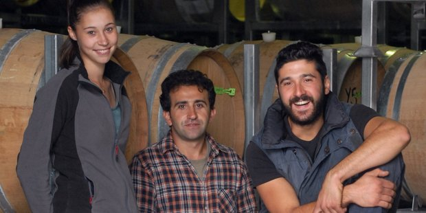 International student winemakers at Palliser Estate Winery this harvest includes German Maria Bietighoefer, Fatih Yener, of Turkey, and Italian Simone Amorese. PHOTO/NATHAN CROMBIE