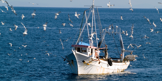 The fishing industry is going through a bad spell. Photo / iStock