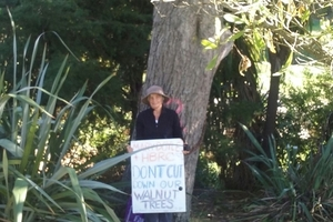 A woman has chained herself to one of many trees earmarked for removal in Havelock North this morning. Photo / Paul Taylor
