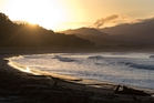 The Save Waikawau Bay Group says development will have a major impact on the wildlife and landscape. Photo / Alan Gibson