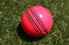 Cricket Australia hopes the Proteas will agree to  a pink-ball test in the name of the fans.  Photo / AP