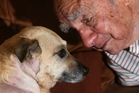Ninety-two-year-old Jim Morgan's first thought after being attacked by an American pitbull was to ring a vet to get help for his canine companion, Sandy. Photo / Michael Cunningham