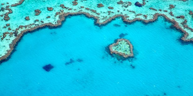 Heart Reef on Great Barrier Reef near the Whitsunday Islands.