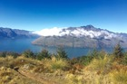 Scenery on the Queenstown Mountain run. Image / Supplied