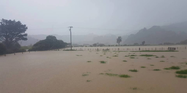 Heavy rain and flooding on the Coromandel peninsular. Photo / Supplied