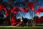 Jill Walker with the poppies being made as part of field of rememberance for poppy day.  Photo/Stephen Parker