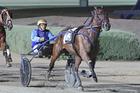 Advantage Monbet. Photo / Harness Racing Victoria