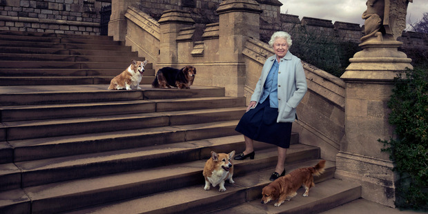 The Queen poses at Windsor Castle with her dogs Willow, Vulcan, Holly and Candy. Photo: Annie Leibovitz/AP