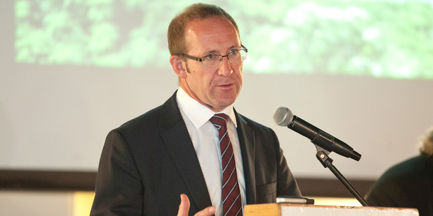 Labour Party leader Andrew Little. Photo / Ben Fraser