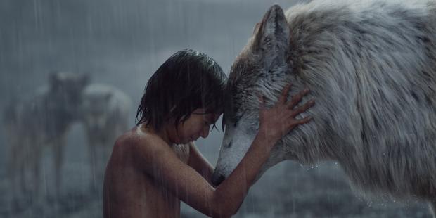 Loading Neel Sethi as Mowgli and Raksha voiced by Lupita Nyong'o. Photo / Disney
