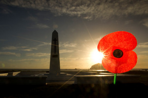 The RSA says the 2 Cheap Cars ad and its Anzac Day reference is 'unacceptable'. Photo / Alan Gibson
