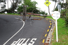 The pole fell on to Binnie St, Paihia, dropping high-voltage lines across State Highway 11. PHOTO/PETER DE GRAAF