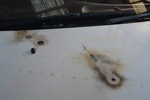 The arcing power lines melted a series of holes in Mr Sisley's car. PHOTO / DARREN MARKIN