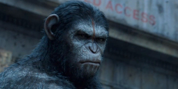 A scene from the movie Dawn of the Planet of the Apes.