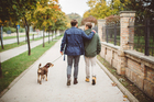 Researchers found that people with higher degrees of pet bonding were more likely to take their dogs for a healthy walk. Photo / iStock
