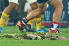 A general view of the surface of AAMI park after large divots of turf were ripped up during a scrum. photo / Getty