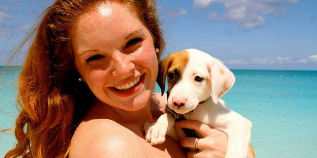 Tourists looking for canine companionship will find paradise in Providenciales. Photo / Potcake Place