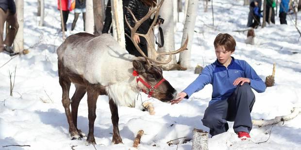 Meet the family at Running Reindeer Ranch near Fairbanks, Alaska. Photo / Facebook