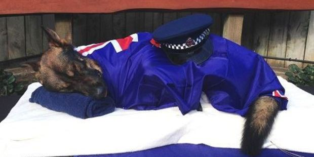Gazza farewelled by police, wrapped in a New Zealand flag. Photo / NZ Police