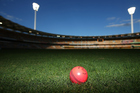 New Zealand embracing idea of second pink ball test in India