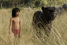 Disney are looking to expand their foray into live action fairy tales following their blockbuster hit this year, The Jungle Book. Photo / Disney