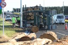 A logging truck flipped its trailer while travelling on the Tauranga Eastern Link this morning. Photo/John Borren
