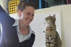 Laura Phillips centre manager of Dannevirke SPCA is leading the drive to reduce the number of stray cats throughout the Tararua. Photo / Christine McKay