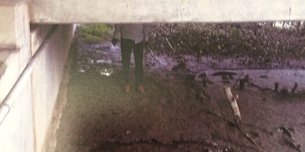 Photo taken by an undercover police officer showing Kamal Reddy standing on the spot where he allegedly buried his partner and her child. Photo / NZ Police