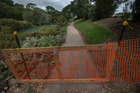 The orange temporary fencing on West End Rd, opposite Cox's Bay Reserve. Photo / Nick Reed