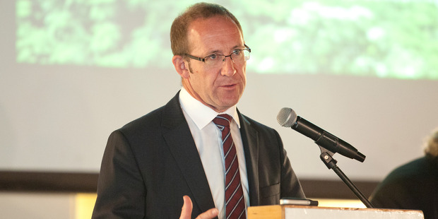 Labour leader Andrew Little will tomorrow make a bid to raise minimum standards of heating and insulation for rental properties. Photo / Ben Fraser