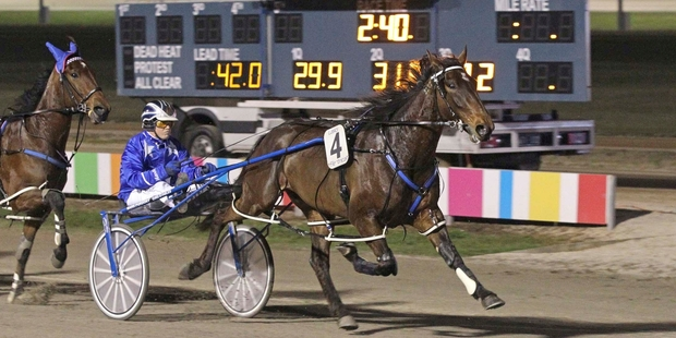 Waikiki Beach could be unbeaten in 19 starts, close to Courage Under Fire's record of 24. Photo / Stuart McCormick