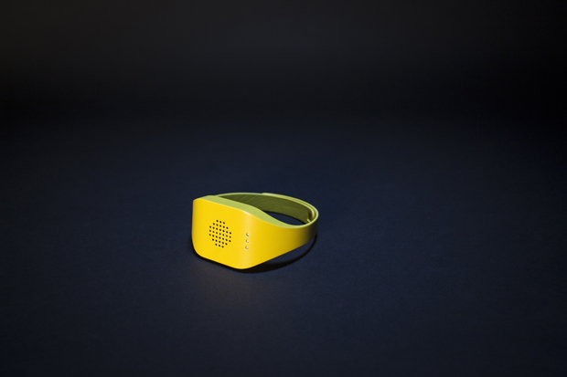 A world first - the 'Catterbox' collar. Photo / Temptations