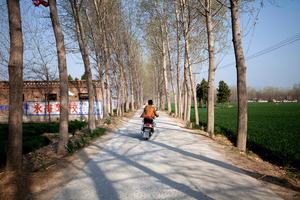 Zhang Tuanjie, a young neighbour and friend of the victim's husband Zhang Yazhou, on his bike. Photo / Washington Post